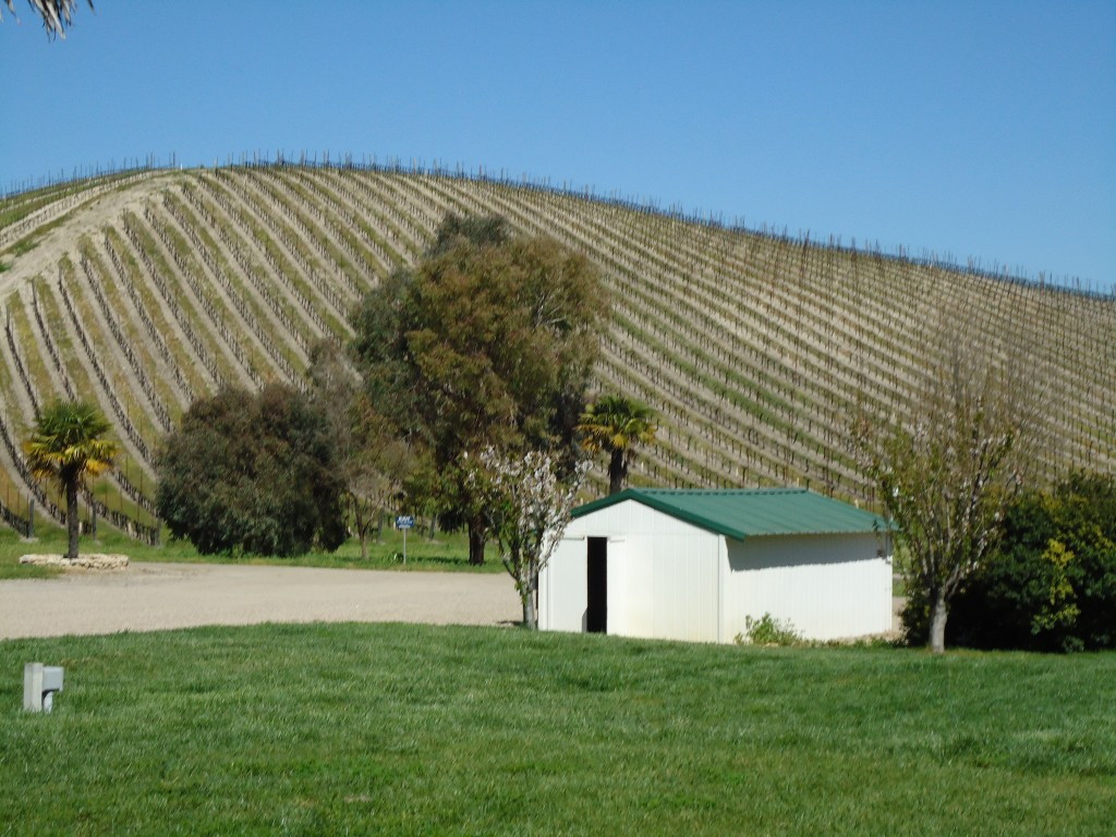 L'Aventure Vineyards on the rolling hills of the Santa Lucia Ranges in Paso Robles
