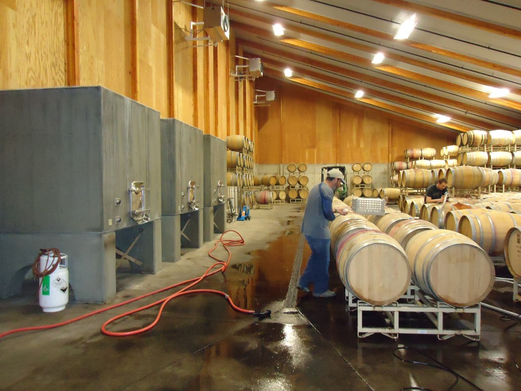 Matt Trevisan at Linne Calodo in the process of blending his wines