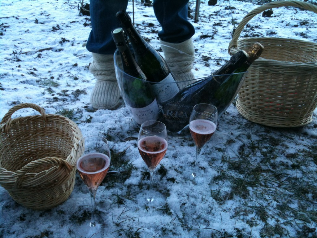 Picnic Tasting in the Snow organised by Melanie Tarlant