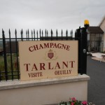 Champagne Tarlant in Oeuilly