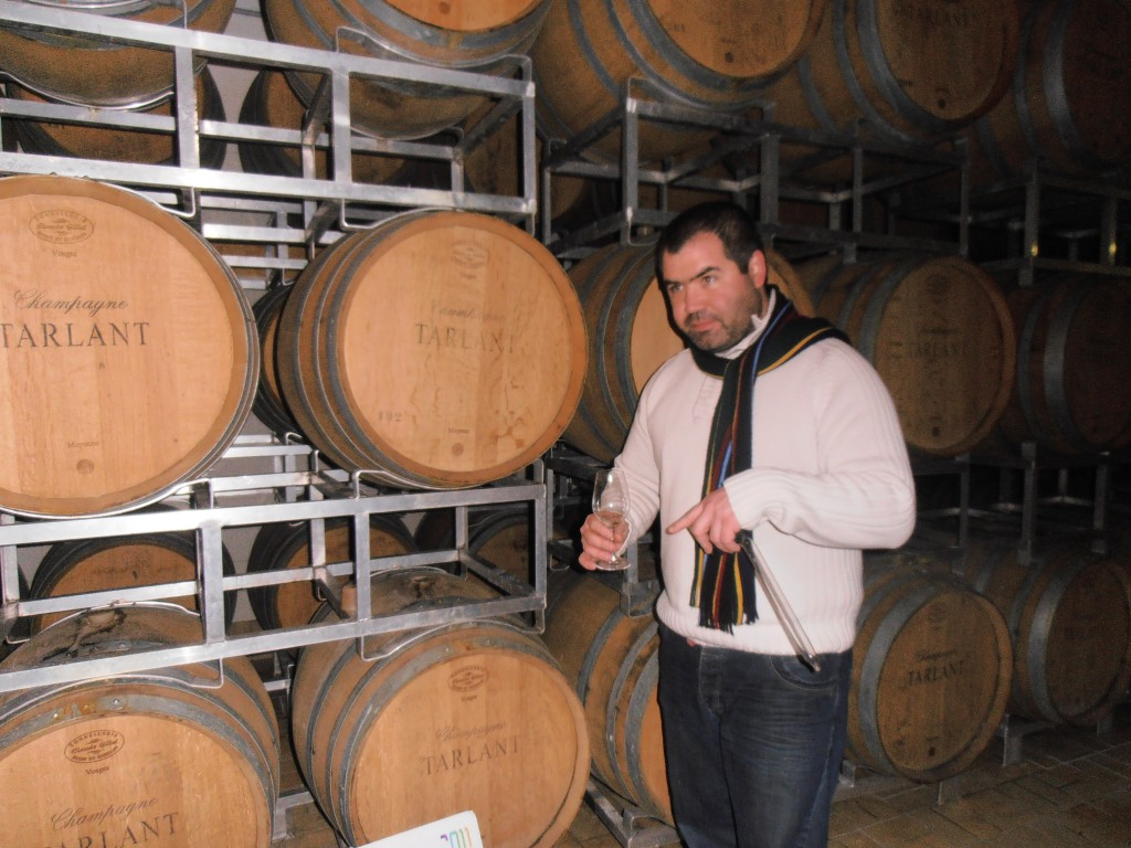 Cellar visit and tasting different base wines with Benoit Tarlant