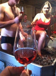 Grape crushing the traditional way at Champagne Laval