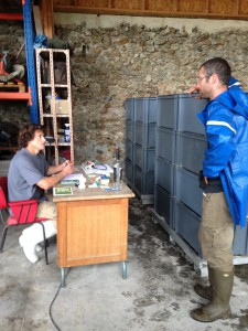 Aurélien and Emilien discussing grape and wine deliveries