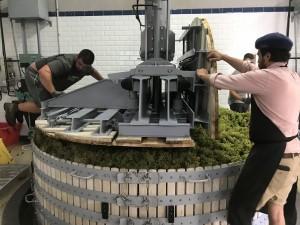 Pressing Chardonnay at Champagne Geoffroy